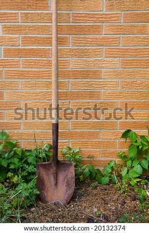 Shovel and weeds