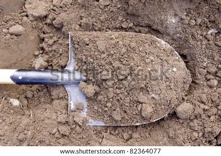 Shovel in the ground