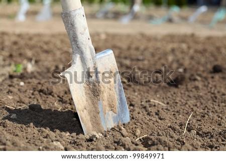 Shovel on field