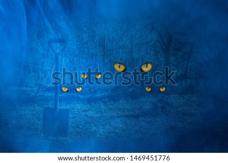 shovel sticks in the ground against the background of a night forest with luminous eyes of wild animals the concept of mystical nature #1469451776