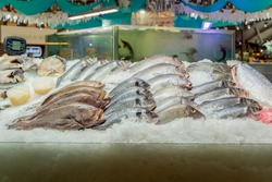 Showcase fish shop. Different  fish lying on the ice, counter of seafood market