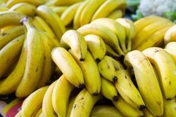 Showcase with ripe yellow bananas at outdoors market