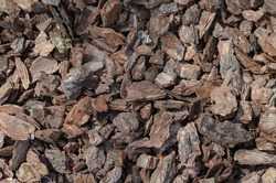 Shredded pine bark for mulching. Natural bark used as a soil covering the garden. Concept of soil mulching in landscape design. Top view, flat lay
