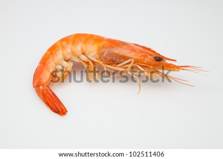 shrimp cooked ready to eat - stock photo