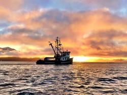 Shrimp trawler near Petersburg Alaska