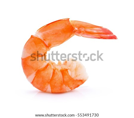 shrimps on a white background