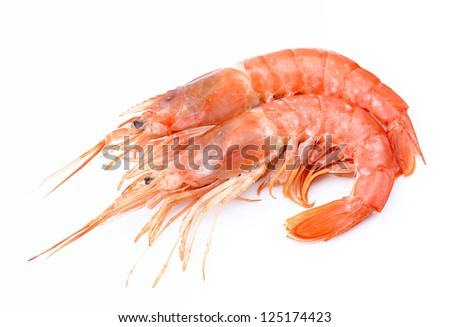 Shrimps on white close up.Seafood