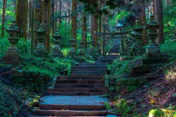 shrine in the forest, Aso, Kumamoto
