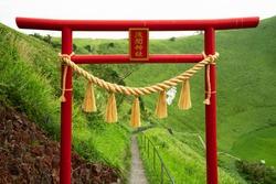 Shrine Torii in Izu Omuroyama, Japan. (Japanese meaning: Asama Shrine)