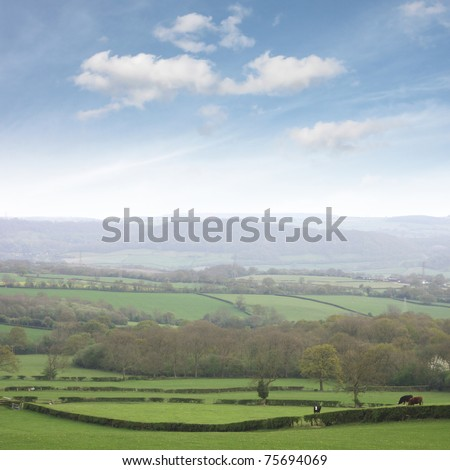 Shropshire countryside, famous for dairy farming. stock photo