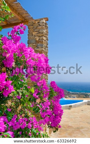 Shrub with pink flowers on the background of the pool, sea and sky ...