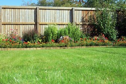 Shrubs And Flowers In A Border Surrounded By A Wooden Panel Fence And Grass Lawn In A Back Garden.