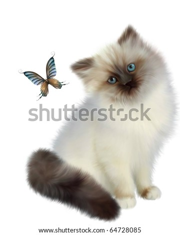 Siamese kitten watching a butterfly on white background