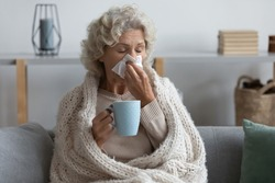 Sick mature woman wrapped blanket blowing running nose, feeling unhealthy and ill, upset middle aged female holding paper napkin, handkerchief, holding tea or coffee mug, sitting on couch at home
