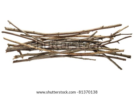 Sicks and twigs, wood bundle isolated on white background - stock photo
