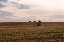 Side lit bales of hay in field seen during a late summer early morning, Island of Orleans, Quebec, Canada