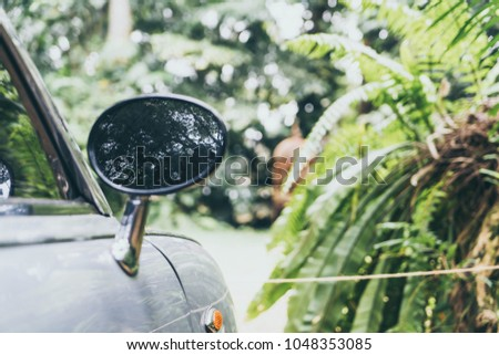 side rear-view mirror on vintage classic car - vintage filter