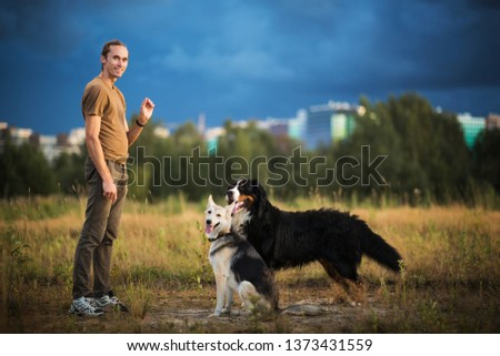 Side view at a young stylish caucasian man training two dogs Bernese Mountain Dog and shepherd dog on the summer field. Love owner and dog concept #1373431559