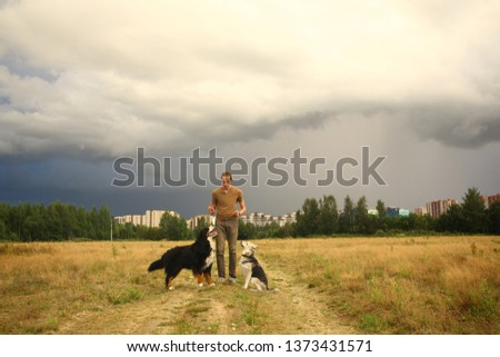 Side view at a young stylish caucasian man training two dogs Bernese Mountain Dog and shepherd dog on the summer field #1373431571