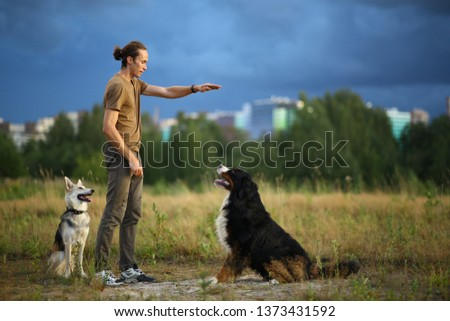 Side view at a young stylish caucasian man training two dogs Bernese Mountain Dog and shepherd dog on the summer field #1373431592