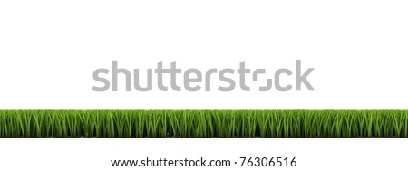 side view 3D Grass border isolated over white