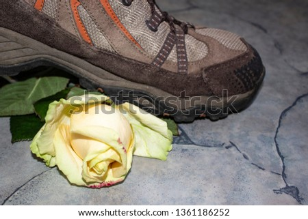Side view of a bright yellow rosebud with green leaves under a brown heavy sneaker. Flower and sneakers in focus. Gray marble floor. The concept of undue violence. #1361186252