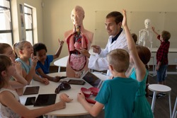 Side view of a Caucasian male teacher wearing a lab coat using a human anatomy model to teach a diverse group of elementary school children about human organs during a biology lesson, the children