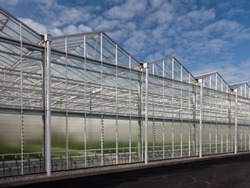 Side view of a new greenhouse against a blue sky in The Netherlands