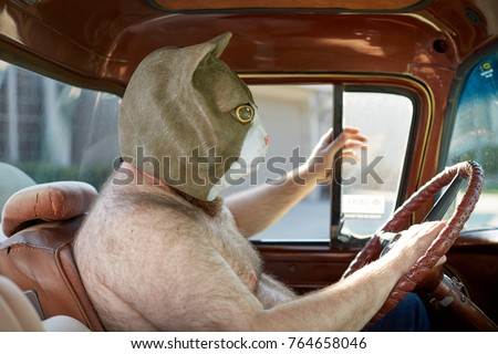 Side view of a shirtless overweight man wearing a weird and funny cat mask while driving a car