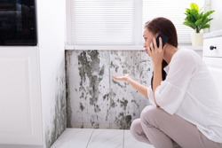 Side View Of A Young Woman Calling For Assistance On Cellphone Near Damaged Wall