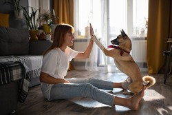 Side view of cheerful female doing high five with cute dog while sitting on floor and playing at home