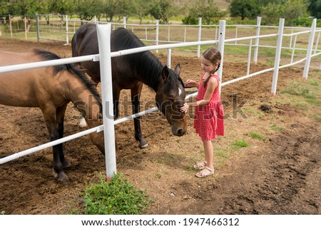 Side view of child girl petting horse at ranch. Kid standing near the white fence in the stable and stroking horse, countryside, Active family weekend lifestyle. Local getaway with kids. Staycation Photo stock ©