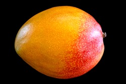 Side view of fresh ripe mango fruit isolated on black background
