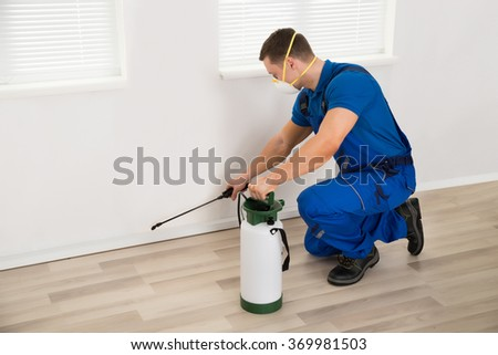 Side view of male worker spraying pesticide on wall at home