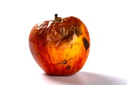 side view rotten apple on a white background
