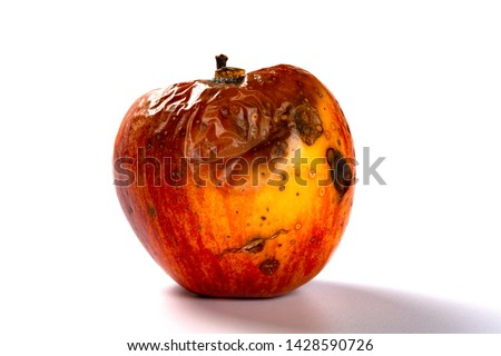 side view rotten apple on a white background Foto stock ©
