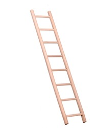 Sideview of a wooden ladder