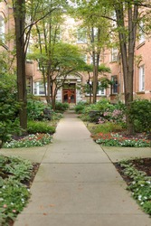 Sidewalk in courtyard of house in Chicago