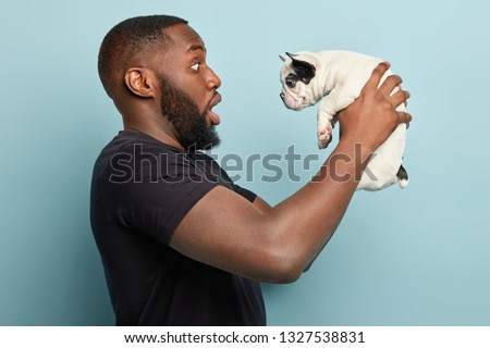Sideways shot of surprised dark skinned guy holds small pet has black ears, amazed with its little size, dressed in black casual t shirt, poses against blue wall. Afro American man plays with dog