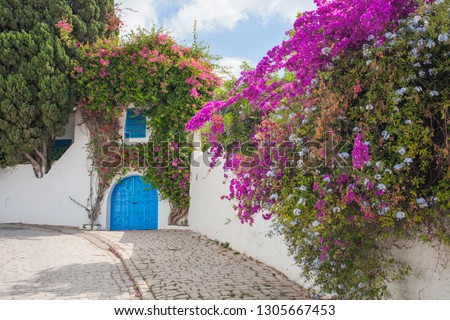 Sidi Bou Said is considered a city of poets and artists.  is the scenic village, located on the hilltop and popular among tourists, visiting Tunisia, North Africa. a quiet city for creativity #1305667453