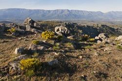 Sierra de Gredos from the Lanchal hill. Avila. Spain