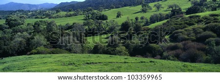 Sierra de Salinas Mountains, Carmel Valley, California