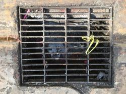 Sieve of drain