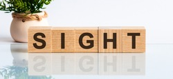 SIGHT is a word written in black letters on wooden cubes located on a white mirror surface. The inscription is reflected, in the background there is a flower in a pot of light brown color. SIGHT word