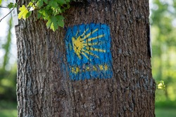 sign of Pilgrim's Route to Santiago de Compostela on a tree, cose up