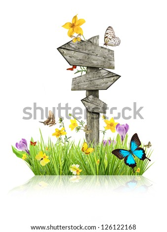 Signpost in meadow with butterflies, concept of spring - stock photo