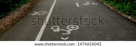 Signs and markings with white paint on bicycle lanes. Symbol of a cyclist and a pedestrian. The direction of movement of the cyclist.                      #1476656042