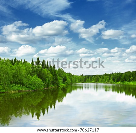 Silent lake near green forest.