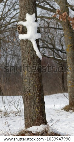 Silhouette, a cat shape molded from snow on a tree trunk. Ukraine.