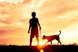 Silhouette child playing with dogs, Concept play with dog.